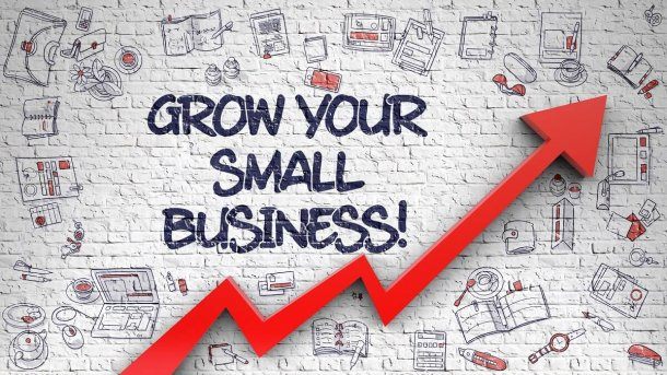 grow your small business websuited ft pierce